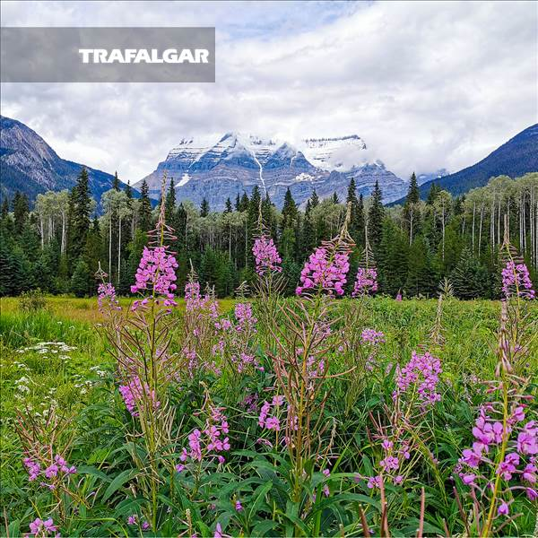 Panoramic Canadian Rockies with Rocky Mountaineer Silverleaf